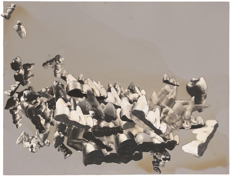 Traveling Portrait (Chance Landscape), 1973