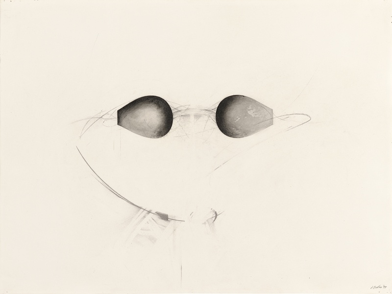 Jay DeFeo, Reverse (Water Goggles series), 1977