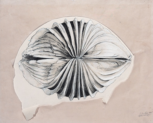 Jay DeFeo, After Image, 1972