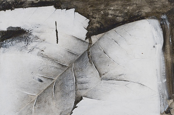Jay DeFeo, Detail (Snake River Canyon), 1974