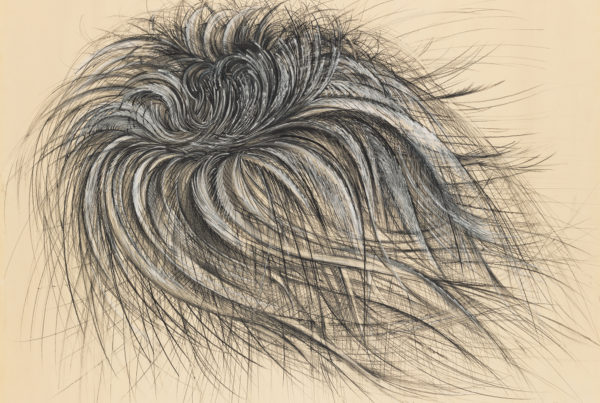 Jay DeFeo, Apparition, 1956