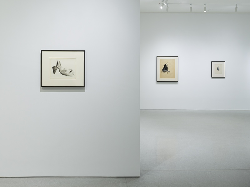 Gagosian Transcending Definition: Jay DeFeo in the 1970s installation view